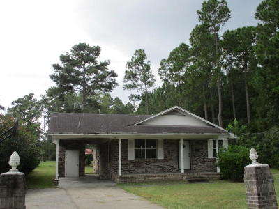 Walterboro Single Family Home For Sale: 316 Pine Needle Road