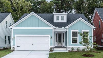 Mount Pleasant Single Family Home For Sale: 1205 Gannett Road