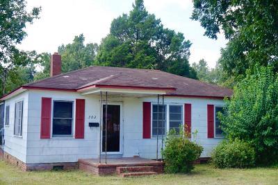 Moncks Corner Single Family Home For Sale: 302 Wall Street
