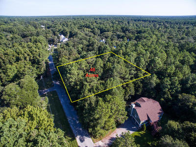 Residential Lots & Land For Sale: 1528 W Palmetto Fort Drive