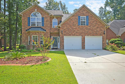 Goose Creek Single Family Home For Sale: 127 Dasharon Lane