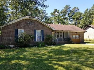 Summerville Single Family Home Contingent: 206 Terry Avenue