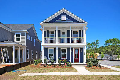 Johns Island Single Family Home For Sale: 1720 Sparkleberry Lane