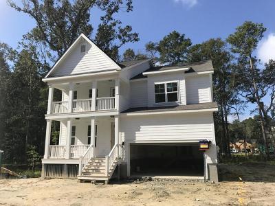 Charleston Single Family Home Contingent: 1460 Brockenfelt Drive