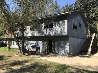 Single Family Home For Sale: 99 Swanson Drive