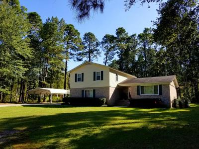 Walterboro Single Family Home For Sale: 335 Waverly Road