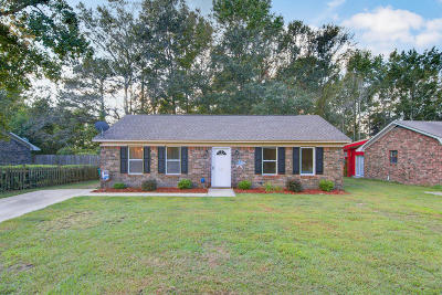 Summerville Single Family Home Contingent: 127 Stephanie Circle