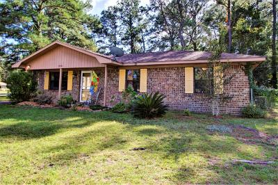 Johns Island SC Single Family Home Contingent: $175,000