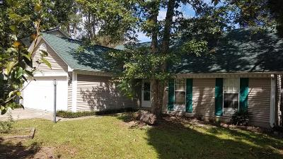 Goose Creek Single Family Home For Sale: 265 Okehampton Drive
