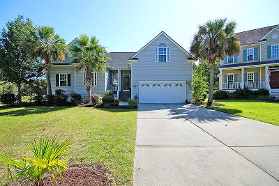 Mount Pleasant Single Family Home For Sale: 2629 Coral Vine Court