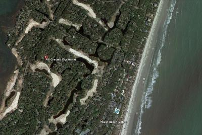 Kiawah Island Single Family Home For Sale: 46 Crested Flycatcher