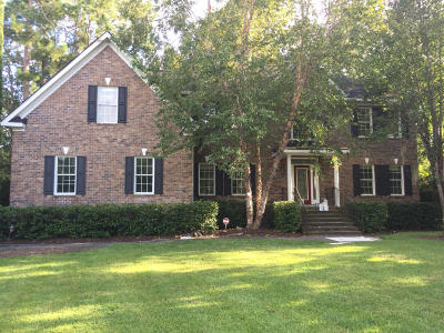 Mount Pleasant Single Family Home For Sale: 3577 Henrietta Hartford Road