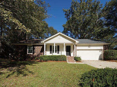 Goose Creek Single Family Home For Sale: 141 Fox Chase Drive
