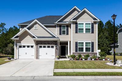 Moncks Corner Single Family Home For Sale: 113 Blackwater Way