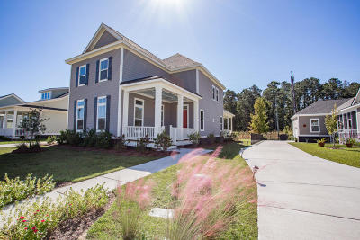 Ravenel Single Family Home For Sale: 4140 Home Town Lane #(Lot # 2