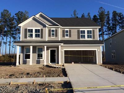 Single Family Home For Sale: 219 Basket Grass Lane