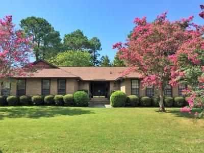 Mount Pleasant Single Family Home For Sale: 684 Pelzer