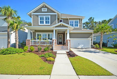 Mount Pleasant Single Family Home For Sale: 3761 Maidstone Drive