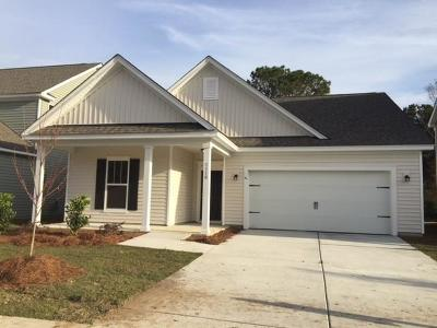 Charleston County Single Family Home For Sale: 1110 Turkey Trot Drive