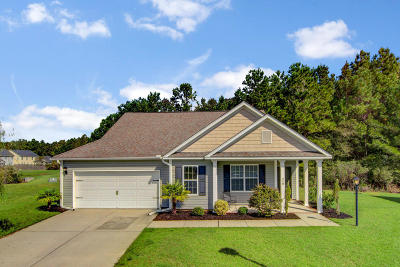 Goose Creek Single Family Home For Sale: 218 Seth Court