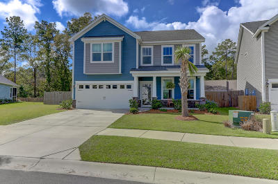 Johns Island Single Family Home For Sale: 3241 Hartwell Street