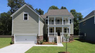 James Island Single Family Home For Sale: 582 Saltgrass Pointe Dr