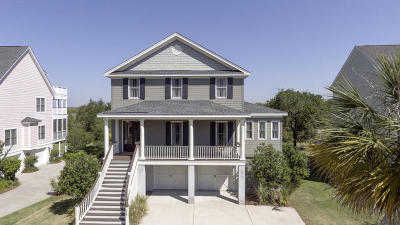 Johns Island Single Family Home For Sale: 559 Two Mile Run