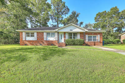 West Ashley Plantation Single Family Home For Sale: 1810 Christian Road