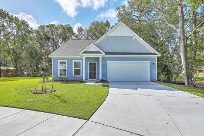 Johns Island Single Family Home For Sale: 1563 Thoroughbred Boulevard