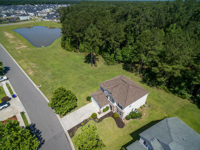Moncks Corner Single Family Home For Sale: 182 Woodbrook Way