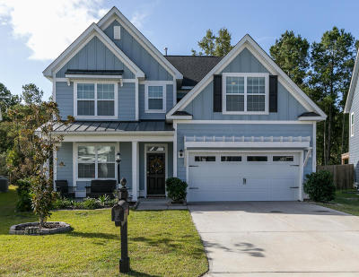 Charleston Single Family Home For Sale: 495 Nelliefield Trail