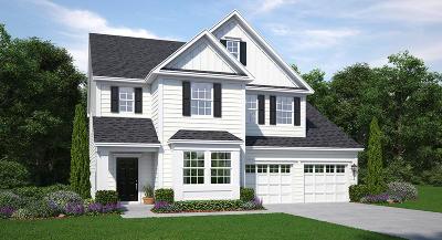 Goose Creek Single Family Home For Sale: 236 Wathen Drive
