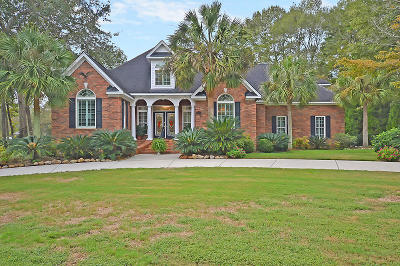 North Charleston Single Family Home For Sale: 8648 Arthur Hills Circle