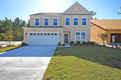 Moncks Corner Single Family Home For Sale: 107 Lakestone Road