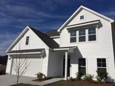 Johns Island Single Family Home For Sale: 1121 Turkey Trot Drive