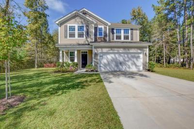 Single Family Home For Sale: 334 Bay Village Lane