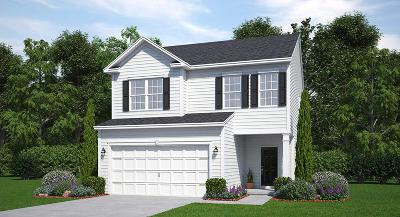 Summerville Single Family Home For Sale: 756 Redbud Lane