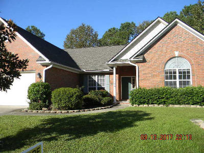 Goose Creek Single Family Home For Sale: 136 Chatfield Circle