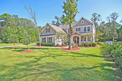 Hanahan Single Family Home For Sale: 1229 Pasture View Drive