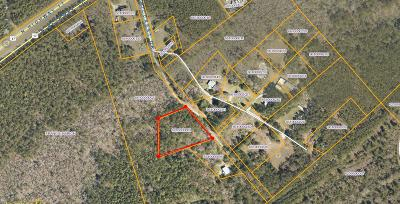 Awendaw Residential Lots & Land For Sale: 1043 Milcrest Drive