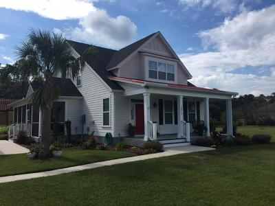 Johns Island Single Family Home For Sale: 3073 Fosters Glenn Drive