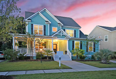 Mount Pleasant SC Single Family Home For Sale: $485,000