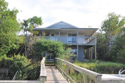 Charleston Single Family Home Contingent: 1558 Terns Nest Road