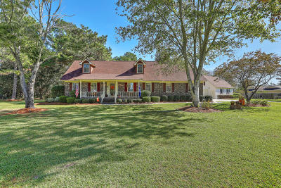 Berkeley County Single Family Home For Sale: 117 Hartin Boulevard