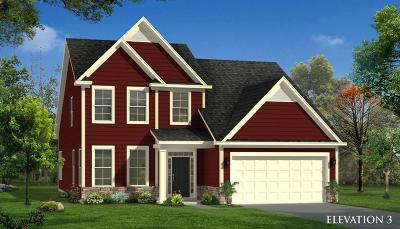 Single Family Home For Sale: 145 Koban Dori Road