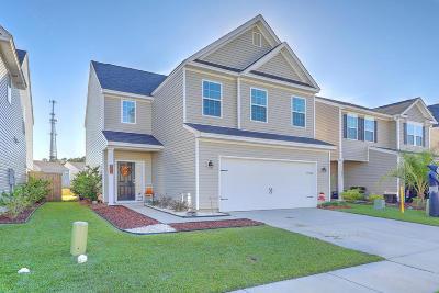 Single Family Home For Sale: 407 Turnbridge Lane