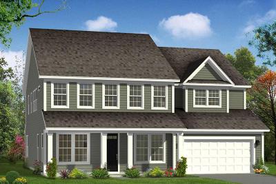 Summerville Single Family Home For Sale: 143 Koban Dori Road