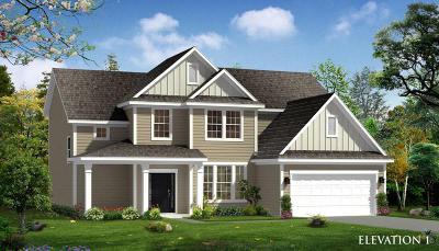 Summerville Single Family Home For Sale: 149 Koban Dori Road