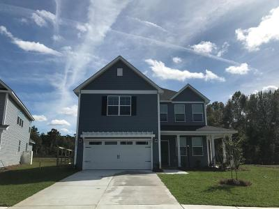 Ladson Single Family Home For Sale: 2967 Discovery Drive