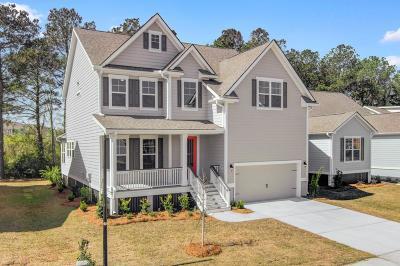 Single Family Home For Sale: 1430 Brockenfelt Drive